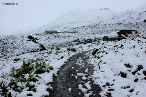 Snow-at-Letdar-Annapurna-Circuit-Trek-Nepal